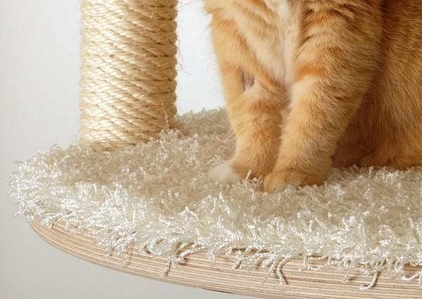 Goldtatze Katzenmöbel